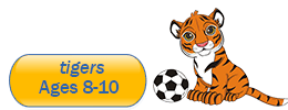 tigers 8 to 10 years old